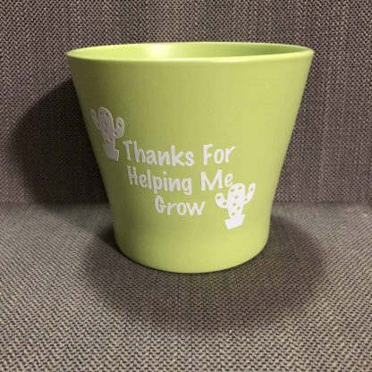 Teacher Gift Pot Plant Green